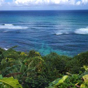Kauai Reef The Adventure Travelers